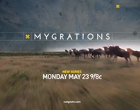 Mygrations Series Sell