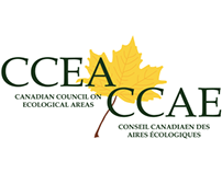 CCEA Organization Branding