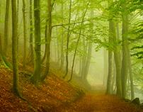 Autumn in Tyrol