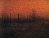 Night Promenade -1-