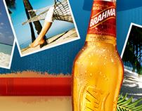 Промо-сайты для пива Brahma