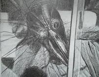 pencil & pen drawings