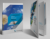 Annual Report Series 1