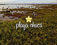 Playa Chacá web