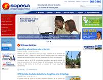 Sopesa website