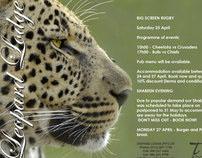 Leopard Lodge Emailer