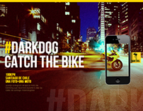 DarkDog - Catch The Bike