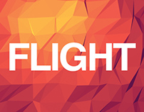 Flight Snowboard Identity