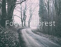 Foggin' Forest