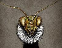 Insectos Clásicos