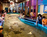 The Maritime Aquarium | Norwalk, CT | Exhibits