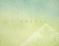 Pinnacle — Report on Philanthropy 2012