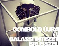 GOMBOLD ÚJRA @ BRÜSSZEL  //  installation  //  2012
