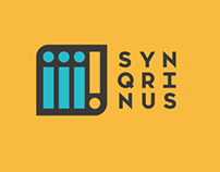 Synqrinus Qualitative Research