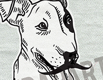 Mr Huck, bull terrier.