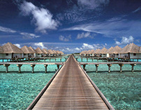 Maldives Dreams