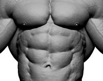 Bodybuilder Sculpt - Siamak Roshani
