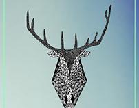 Deerposter