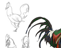 Rooster Sketches