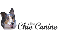 Chic Canine