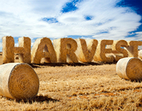 HARVEST - photo manipulated typography
