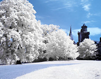 Mix of Special Effect Picutres. Infrared/HDR/...