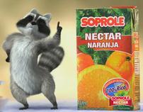Soprole Nectar