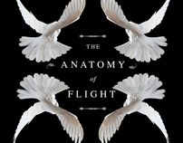 Anatomy of Flight