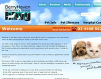 BerryHaven Veterinary Group - Web Design/Development