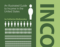 Book: Illustrated Guide to Income in the US