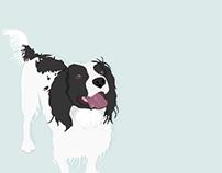 - One Designer & Her Dog -