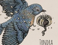 "Artwork for single ""Glow"" by australian band Tundra"
