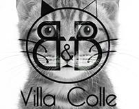 Logo Villa Colle