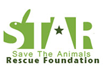 Save The Animals Rescue Foundation redesign campaign
