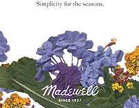 Madewell Clothing Ad