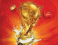 Budweiser World Cup Proposal 2014