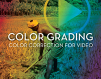 Color Grading - UN University