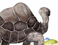 The Return of Extinct Animals
