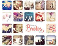 Catálogo de Brotos 2013