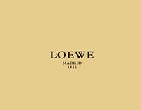 Showcase Loewe design