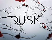 "Dusk ""Channel Launch"""