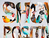 show positivo 2013