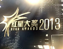 CHANNEL 8 // STAR AWARDS 2013 《红星大奖》