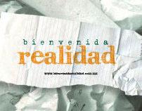 Bienvenida Realidad Website