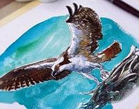 Watercolor birds-2