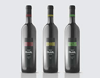 Paarl Wine Presentation