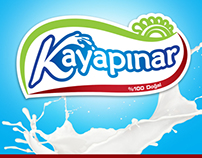 Milk company project...