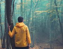Der Wanderer und der Nebel