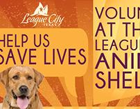 Animal Shelter Volunteer Advertisement