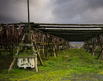 Drying Fish - Reykjanes peninsula
